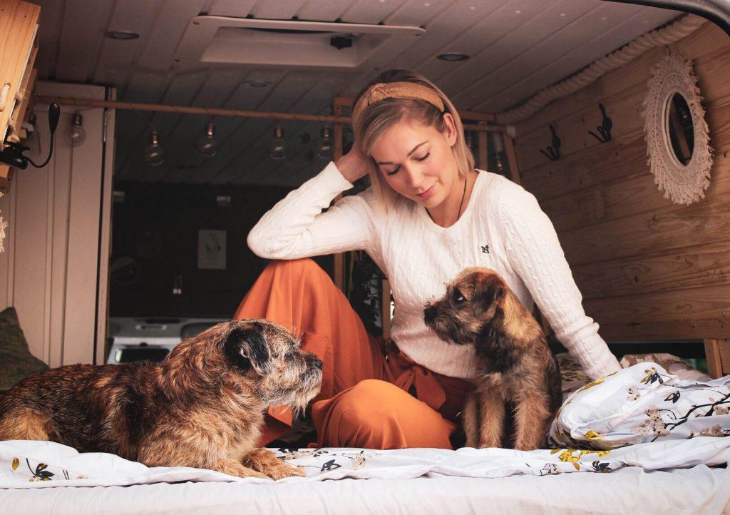 Blogin kirjoittaja ja borderterrierit Torres ja Vasco campervanin sängyllä.
