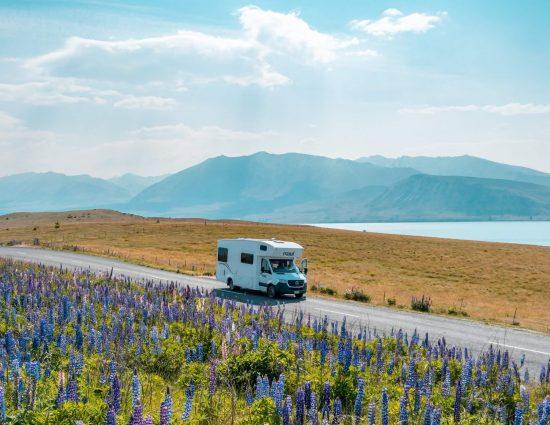 asuntoauto kauniissa Uuden-Seelannin maisemassa, järvi ja lupiininiitty taustalla