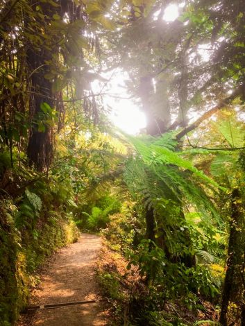 Abel Tasmanin kansallispuisto