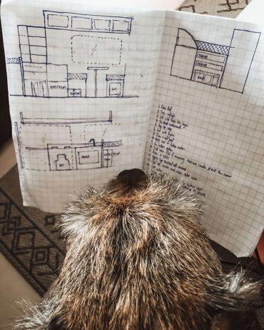 terrierin pää ja paperille piirretty retkeilyauton suunnitelma.