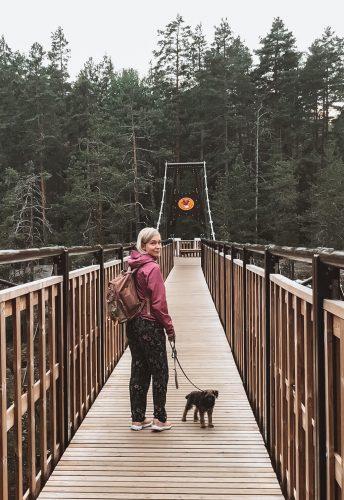 nuori nainen ja borderterrierin pentu Repoveden kansallispuiston riippusillalla.