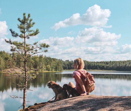 nuori nainen ja kaksi borderterrieriä Saimaa-järven maisemissa.