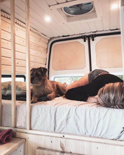 koira ja bloggaaja makoilevat retkeilyauton sängyllä.