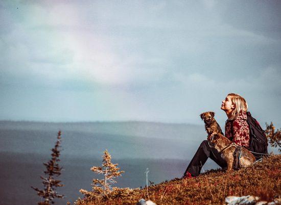 Retkeilijä ja borderterrierit istuvat tunturissa sateenkaari taustalla.