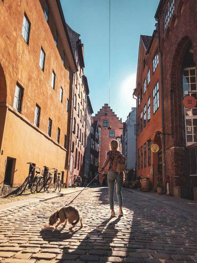 Bloggaaja ja borderterrieri Kööpenhaminan kaduilla.