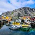 Kalastusveneitä Nusfjordin satamalaitureilla. Lofootit.
