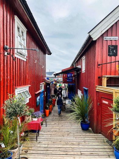 Henningsvaerin kylän punaisia torppia.