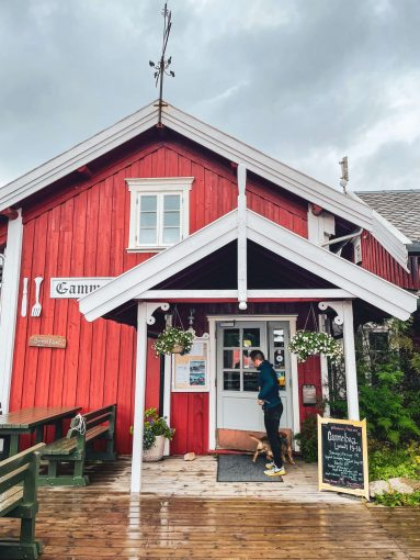 Gammelbua-niminen ravintola ulkoa päin kuvattuna Reinen kylässä.