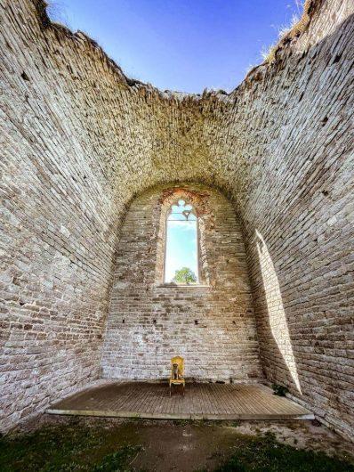 Borderterrieri Torres Alvastran luostarin raunioilla.
